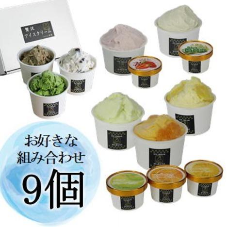 アイスクリーム 9個セット(冷凍便送料込み)