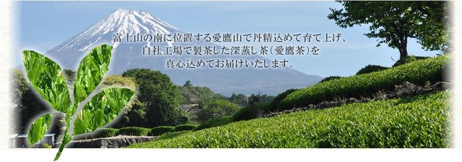 ㈱マルニ茶業
