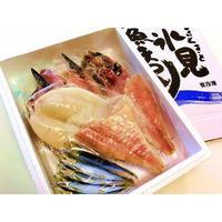 氷見魚まつり【大】