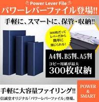 信誠堂パワーレバーファイル 通販