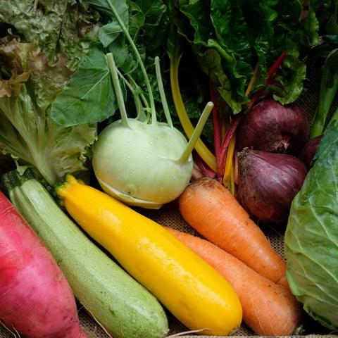 ■富士山麓野菜・厳選おまかせ野菜セット(6月に1回発送)