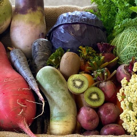 ■オトワファーム・旬の野菜セット(3月に1回発送)