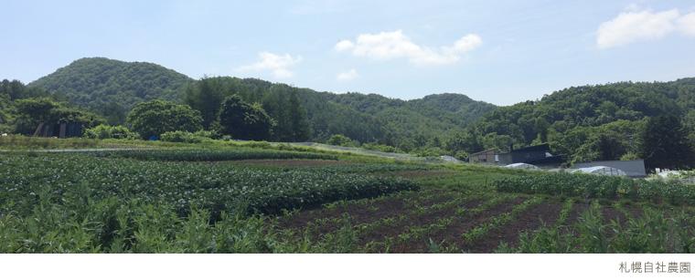 札幌自社農園