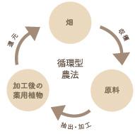 自然循環型農法図
