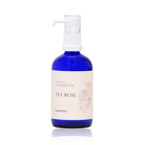 ティーローズ TEA ROSE