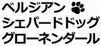 ベルジアンシェパードドッググローネンダール
