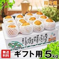 愛媛県産 富士柿 ギフト用 5kg