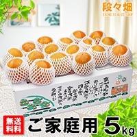 愛媛県産 豊水梨 ご家庭用5kg
