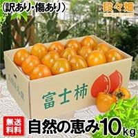 愛媛県産 富士柿 自然の恵み 10kg(傷あり・訳あり