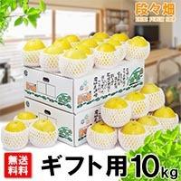 愛媛県産 ジューシーオレンジ ギフト用10kg