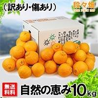 愛媛県産 デコスケ 自然の恵み10kg