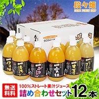 段々畑100%果汁ジュース 詰め合わせセット 12本入り