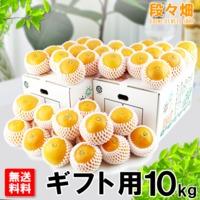 愛媛県産 清見(きよみ)ギフト用 10kg