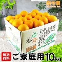 愛媛県産 清見(きよみ)ご家庭用 10kg