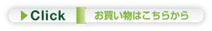 link300.jpg