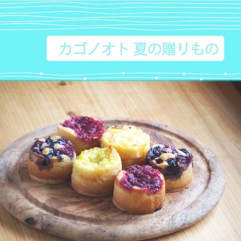 夏の果実タルト