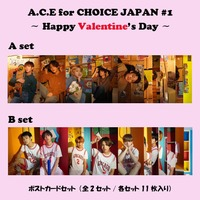 【A.C.E】~Happy Valentine's Day~ポストカードセット (11枚組)