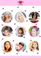 【MOMOLAND JAPAN OFFICIAL SHOP限定】アクアステッカー Vol.1