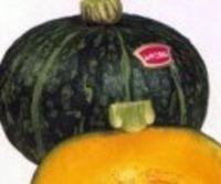 くりかぼちゃ