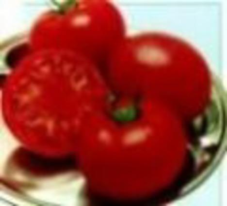 完熟トマト