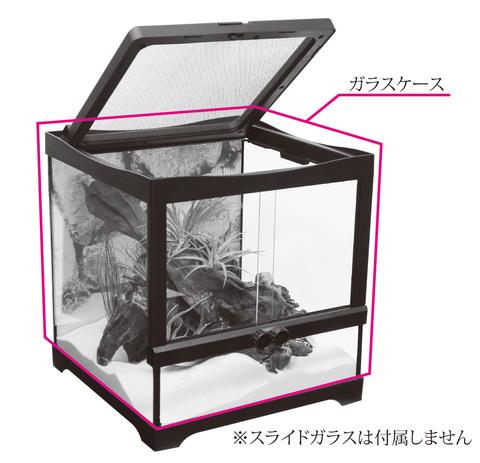ヒュドラケース3133 ガラスケース